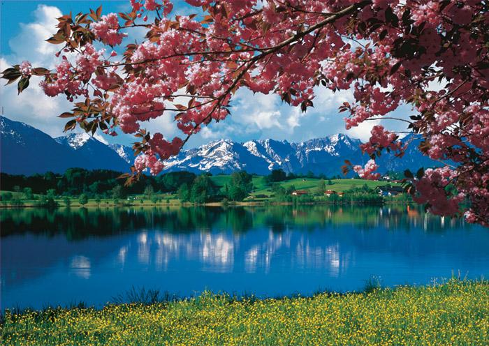 Картинки пейзажи весны 1